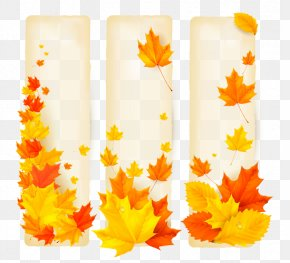 Textured Maple Leaf Design Elements - Banner School Autumn Advertising PNG