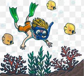 Vector Cartoon Creative Cute Diver Seabed Fish - Cartoon Underwater Diving Clip Art PNG