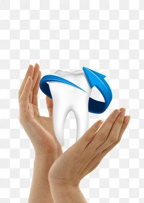 Protect Teeth - Human Tooth Dentistry PNG