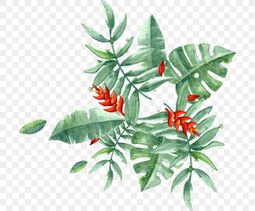 PopSockets Grip Banana Leaf Tropics Plant, PNG, 700x679px, Popsockets Grip, Arecaceae, Banana Leaf, Color, Creative Market Download Free