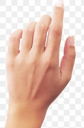 Hands Hand Image - Hand PNG