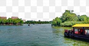 Jinan Daming Lake Scenic - Daming Lake Lugu Lake Notre-Dame De Paris Lagos PNG