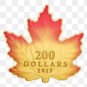 Mid Autumn Pancake - 150th Anniversary Of Canada Canadian Gold Maple Leaf PNG