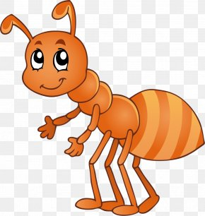 Ant - Insect Cartoon Clip Art PNG