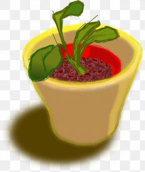 Flower Pot - Flowerpot Clip Art PNG