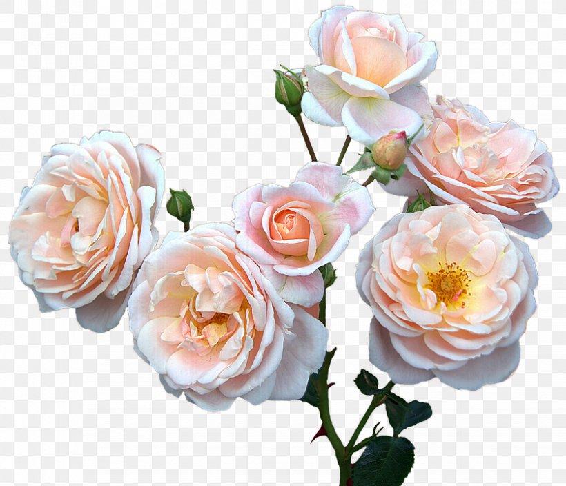 Mother's Day Clip Art, PNG, 838x720px, Mother, Artificial Flower, Cut Flowers, Floral Design, Floribunda Download Free