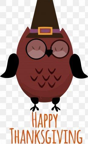 Glasses Owl - Glasses PNG