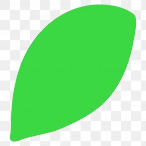 Oval Plant - Green Leaf Logo Clip Art Plant PNG