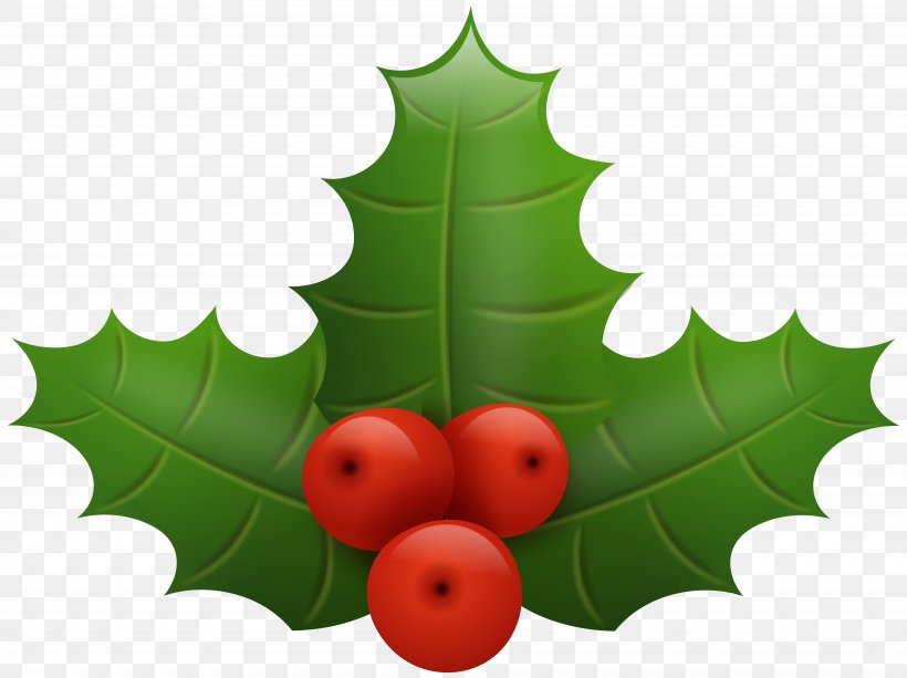 Common Holly Santa Claus Christmas Clip Art, PNG, 8000x5984px, Christmas, Aquifoliaceae, Aquifoliales, Blog, Christmas Decoration Download Free