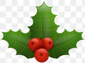 Christmas Holly Clip Art Image - Common Holly Santa Claus Christmas Clip Art PNG