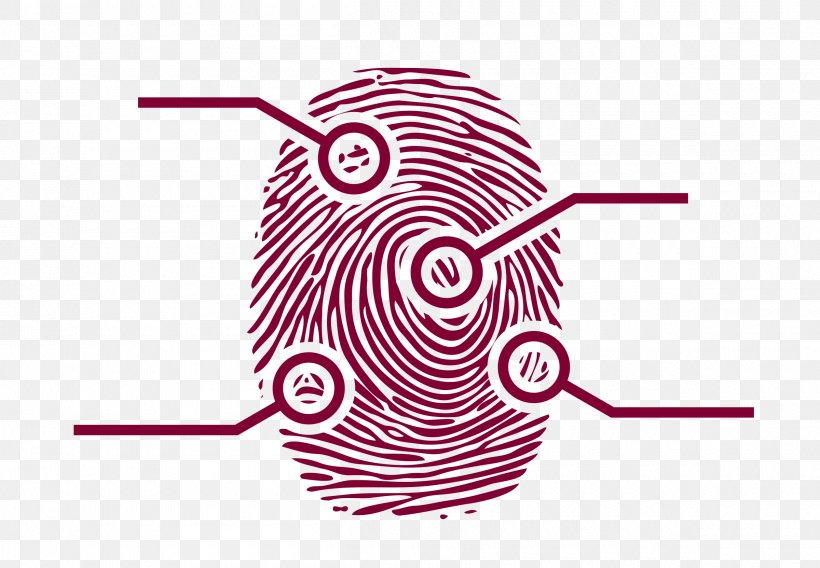 Fingerprint Forensic Science Clip Art Png 2400x1663px Fingerprint Area Finger Forensic Science Hand Download Free