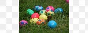 Egg Hunt - Easter Bunny Easter Bilby Egg Hunt Easter Egg PNG