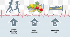Diet And Health Of Human Motion - Healthy Diet Lifestyle Clip Art PNG