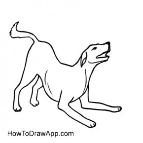 Dog Line Drawing - Boxer Cat Dog Breed Drawing Clip Art PNG