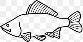 M Fish Line Angle - Clip Art Black & White PNG