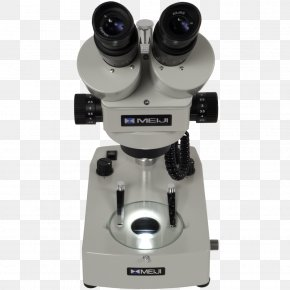 Microscope - Microscope Small Appliance PNG