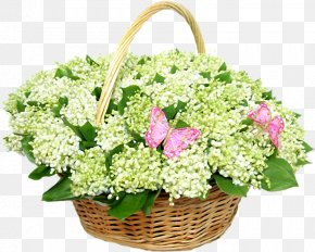 Lily Of The Valley - Lily Of The Valley Flower Bouquet Clip Art PNG