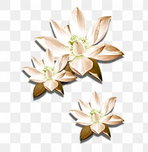 Hand-painted Lotus - Cut Flowers Nelumbo Nucifera Icon PNG