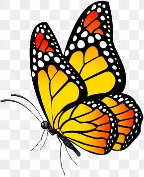Butterfly Yellow Clip Art Image - Butterfly Clip Art PNG