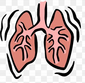 Small Lungs Cliparts - Respiratory System Respiratory Therapist Respiration Respiratory Failure Clip Art PNG