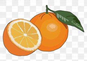 Orange Colour Fog - Orange Juice Fruit Mandarina Food PNG