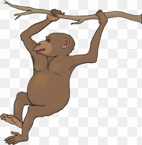 Monkey Hanging On A Branch - Spider Monkey Black Howler Clip Art PNG