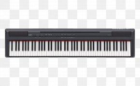 Piano - Yamaha P-115 Digital Piano Stage Piano Keyboard PNG