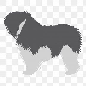 Puppy - Dog Breed Polish Lowland Sheepdog Kerry Blue Terrier Puppy Old English Sheepdog PNG