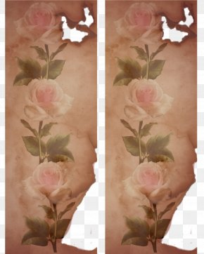 Flower - Petal Blossom Flower Garden Roses PNG