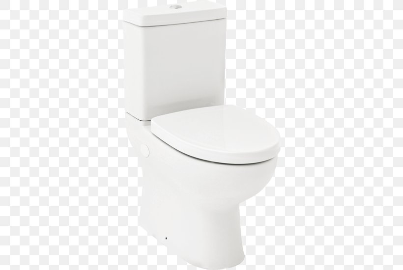 Super Toilet Bidet Seats Flush Toilet Bideh Plumbing Fixtures Machost Co Dining Chair Design Ideas Machostcouk