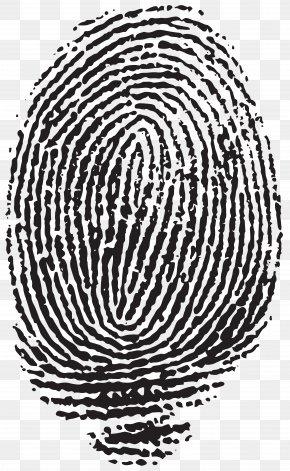 Fingerprint Clip Art Image - Fingerprint Hallongrotta Clip Art PNG