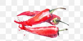 Ink Pepper - Watercolor Painting Vegetable Fruit Illustration PNG