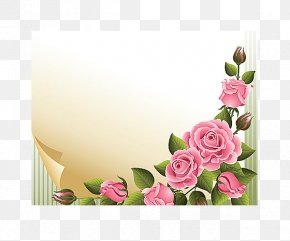 Colorful Romance - Rose Stock Photography Clip Art PNG