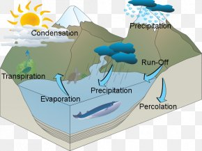Water Cycle - Water Resources Water Cycle PNG