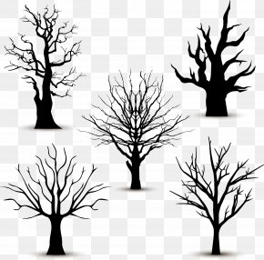 5 Black Trees Without Leaves Vector - Tree Silhouette Euclidean Vector PNG