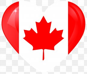 Canada - Flag Of Canada Vector Graphics Maple Leaf PNG