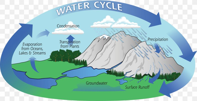 Water Cycle Hydrology Atmosphere Of Earth Evaporation, PNG, 1600x819px, Water Cycle, Area, Atmosphere, Atmosphere Of Earth, Ecosystem Download Free