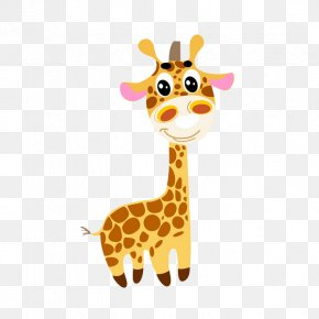 Giraffe - Giraffe Cartoon PNG