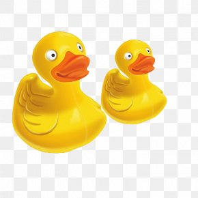 Golden Duck - Cyberduck File Transfer Protocol MacOS WiX Property List PNG