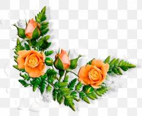 Flower - Flower Borders And Frames Floral Design Clip Art Image PNG