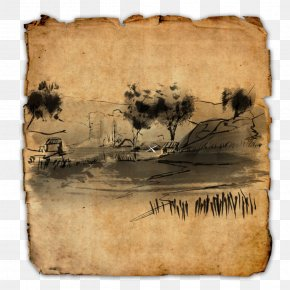 Treasure - The Elder Scrolls Online The Elder Scrolls II: Daggerfall Cyrodiil Treasure Map PNG
