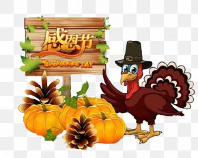 Thanksgiving Pictures - Turkey Thanksgiving Cartoon Clip Art PNG
