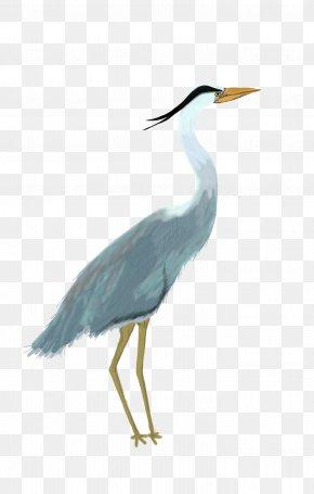 Bird - Great Blue Heron Great Egret Bird Pelican PNG