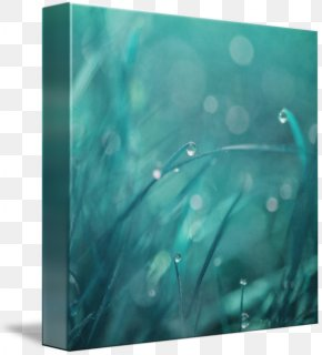 Watercolor Droplets - Gallery Wrap Canvas Modern Art Turquoise PNG