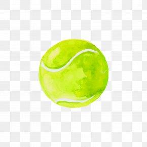 Green Tennis - Tennis Ball Icon PNG