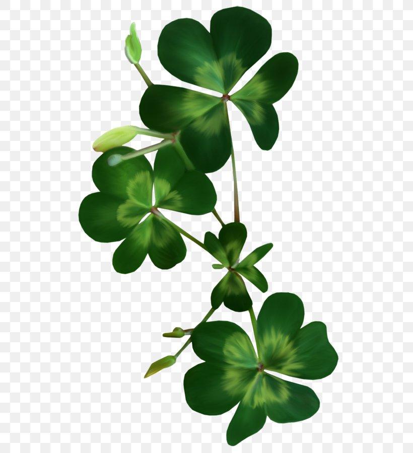 Saint Patrick's Day Shamrock Clover Clip Art, PNG, 544x900px, Saint Patrick S Day, Blog, Centerblog, Clover, Flower Download Free