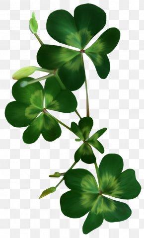 Saint Patrick's Day - Saint Patrick's Day Shamrock Clover Clip Art PNG