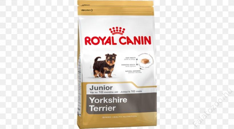 Puppy Yorkshire Terrier Cat Golden Retriever Miniature Schnauzer, PNG, 900x500px, Puppy, Carnivoran, Cat, Cat Food, Dog Download Free