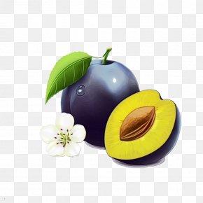 Tree Food - Fruit European Plum Plant Food Tree PNG