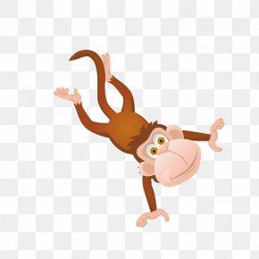 Cartoon Monkey Decoration Pattern - Macaque Monkey Cartoon Clip Art PNG